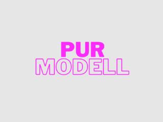 Das PUR Modell: Vieles spricht für eine Übergangslösung
